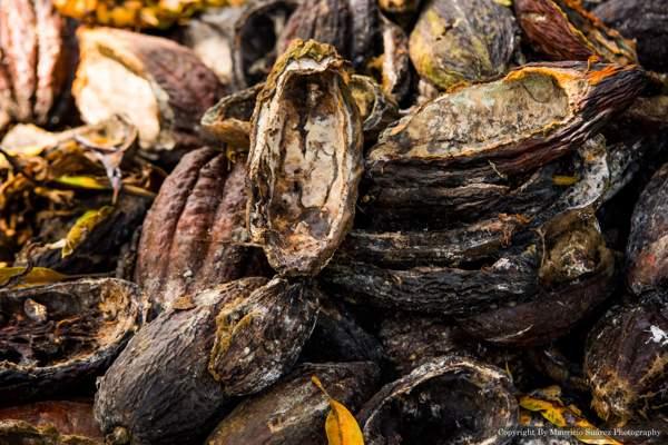 Secretario de Planeación de Santander confirma que el proyecto parque del Cacao no va a realizarse