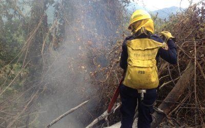 Bomberos de San Vicente de Chucurí cubren emergencias por incendios