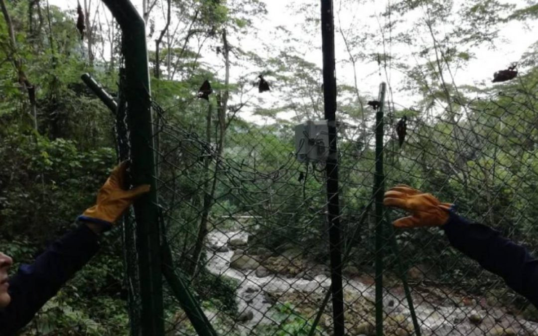 Roban elementos del Sistema de Alertas Tempranas en San Vicente de Chucurí