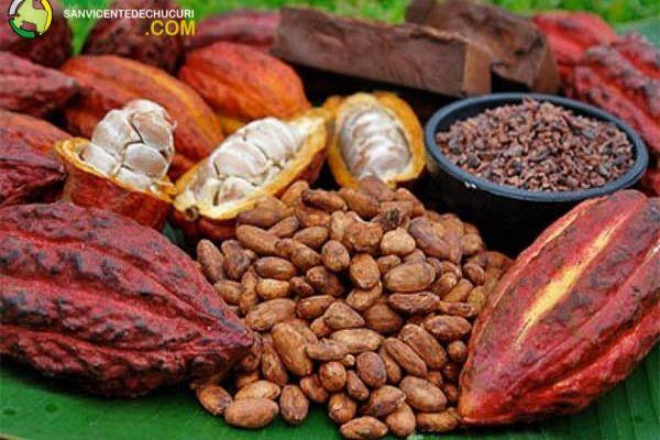Que se haga el parque del cacao