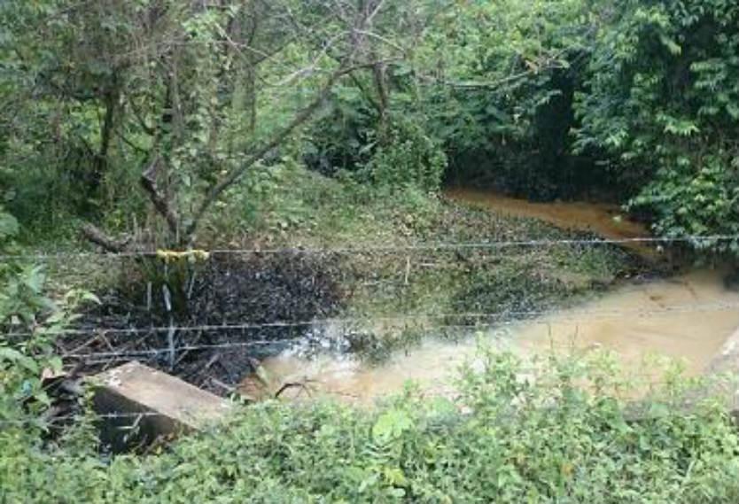 En Carmen de Chucurí piden presencia de expertos para estudiar afloramientos de crudo