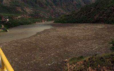 Con el apoyo de mallas, lanchas y retroexcavadoras, están siendo removidas las islas de material vegetal que se acumulan en Topocoro