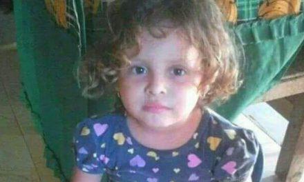 (VIDEO) Familiares piden reanudar la búsqueda de Emily un año después