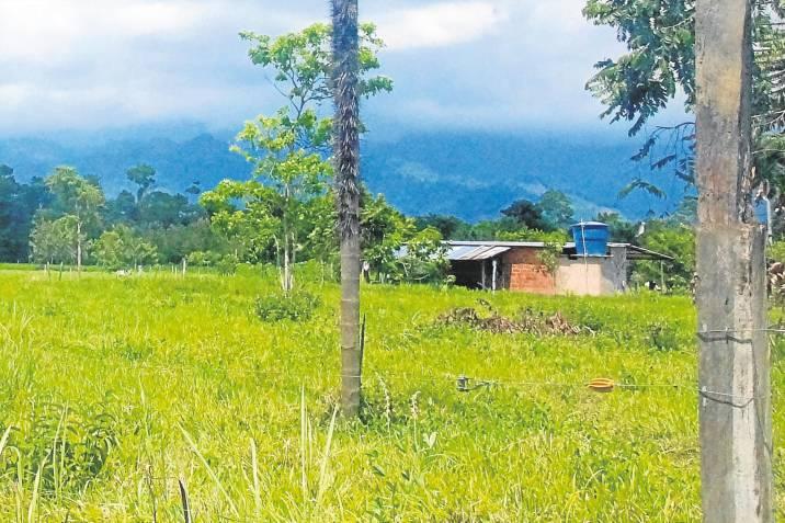 Familia desplazada por la guerra en San Vicente regresará a su hogar