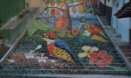 San Vicente de Chucurí: el pueblo que le pinta a la paz